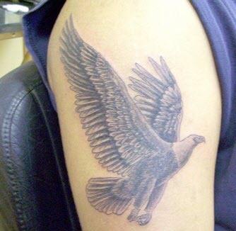 bird tattoo design 2